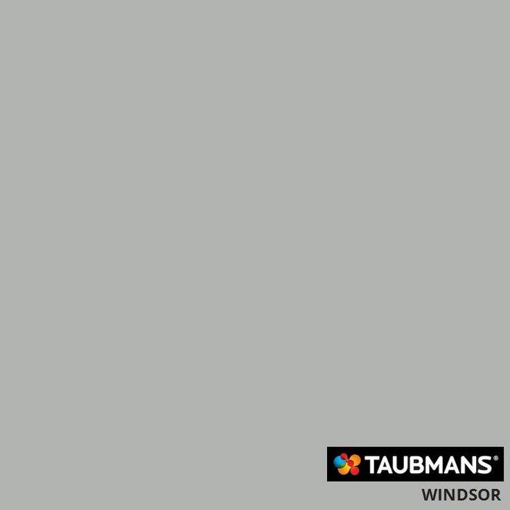 #Taubmanscolour #windsor