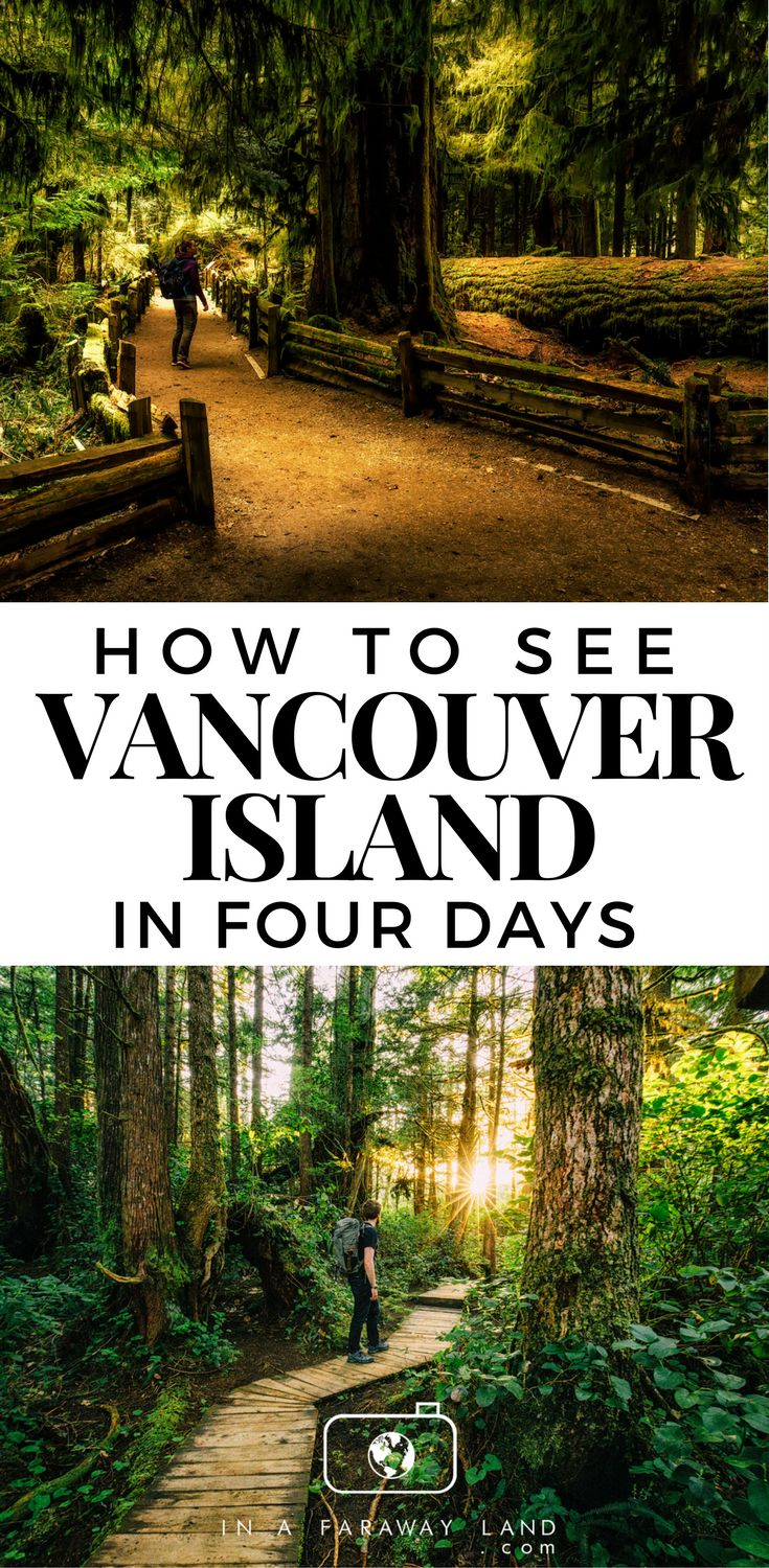 This mini Road Trip guide to Vancouver Island will take you through some of the best spots on the islands including Tofino, Cedar Tree Forest Walk and Pacific Rim National Park Reserve. #Vancouver #Island #Canada #Roadtrip