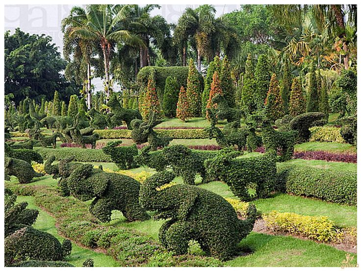 goloro.com - The most beautiful botanical gardens