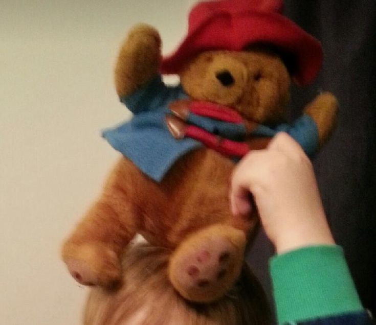 Lost on 12 Aug. 2016 @ Barcelona. My son lost his paddington bear teddy around…