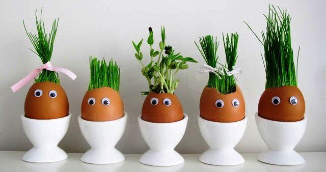 velikonoční tráva, minizahrádka, velikonoční dekorace, pšenice, obilné klíčky