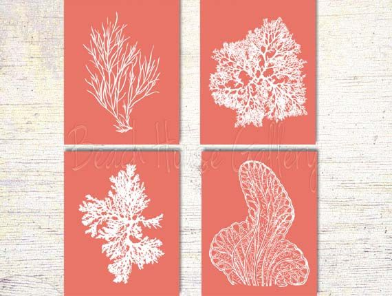 Coral Art Pink Coral Prints Pink Sea Coral by BeachHouseGallery, $27.99