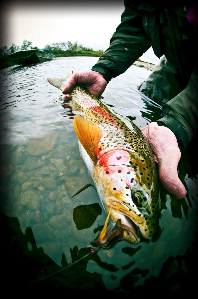 Blog | Fly Fishing | Gink and Gasoline | How to Fly Fish | Trout Fishing | Fly Tying | Fly