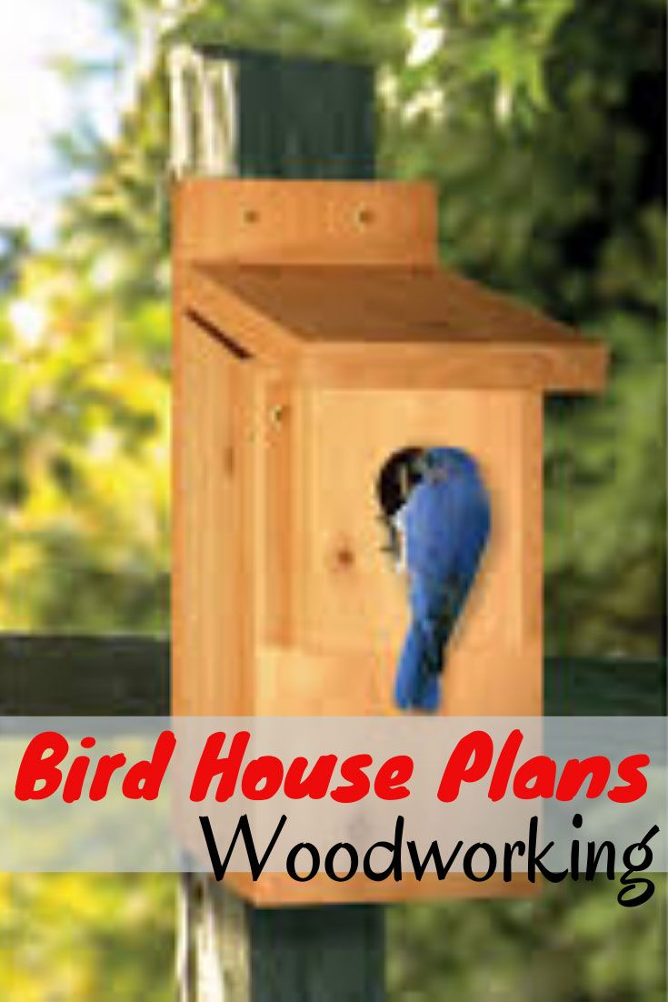 Bird House Plans Woodworking May 31 2020 At 09 01pm Bird House Plans Woodworking Finall In 2020 Woodworking Plans Diy Bird House Plans Woodworking Projects That Sell