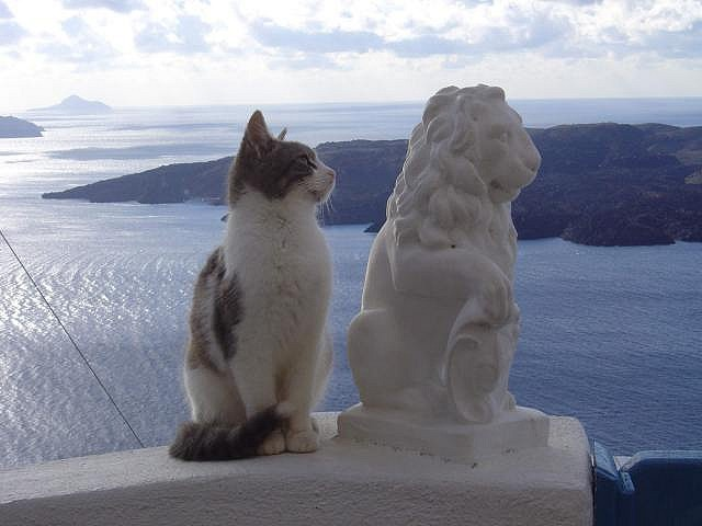 A Greek Cat with a  whitewashed clay representation of a Lion, in Fira, Santorini (aka Thera), Greece.