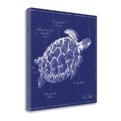 "Tangletown Fine Art Blue Sea Turtle' Graphic Art Print on Canvas Size: 24"" H x 24"" W"