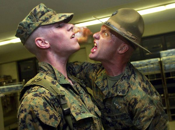 17+ best images about Marine Corps Drill Instructors on Pinterest ...