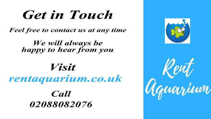 Our daily rental price is inclusive of... Check out here for details: http://rentaquarium.co.uk/our-products/ #RentAquarium, #RentanAquarium, #AquariumLondon, #LondonAquarium, #London