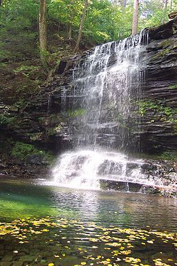 Hiking: Falls Trail at Ricketts Glen State Park (PA)
