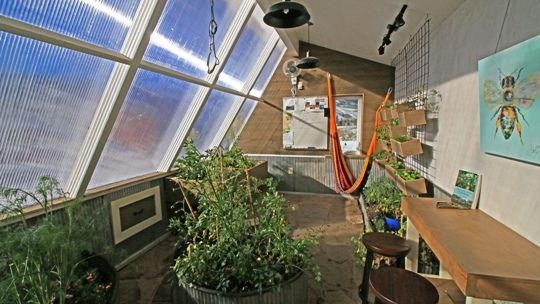 7 Questions to Answer Before You Build a Greenhouse
