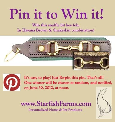 Congratulations to SHAWNA GRIFFITH on winning this Padded Leather Key Fob by Pinning it to Win it! You can see them on my site, here:  http://www.starfishfarms.com/ALL_PADDED2011.html