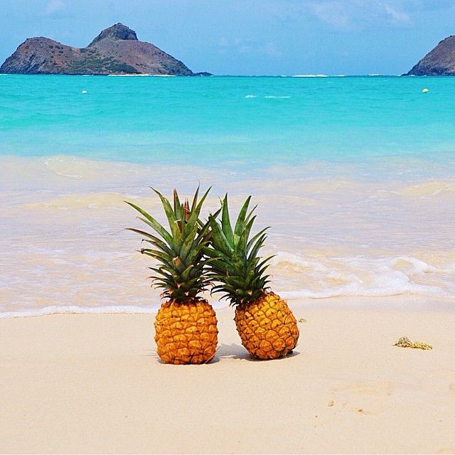 pineapples | Tumblr