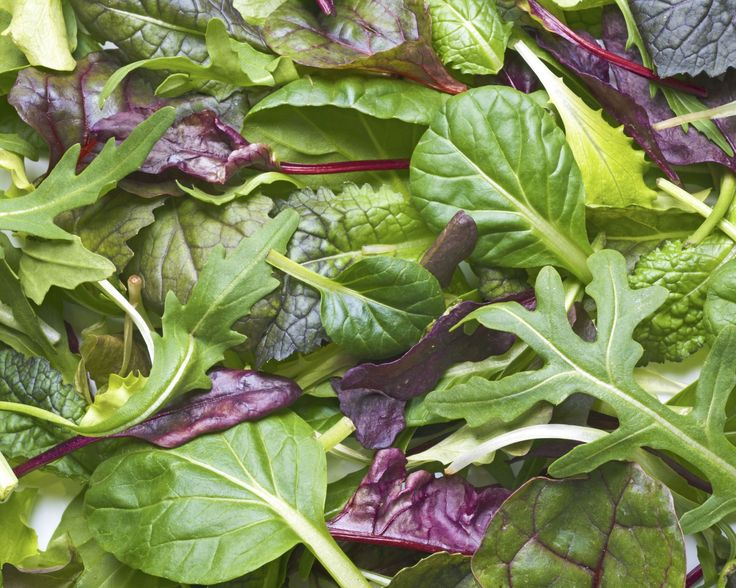 7 best keep food fresh images on Pinterest Food fresh, Easy - fresh blueprint 3 commercial