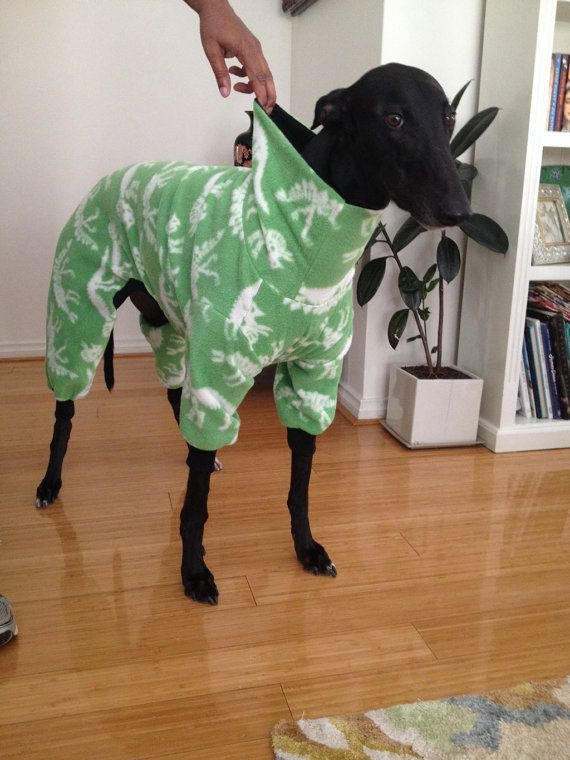 Greyhound, Whippet Polar Fleece Dog Jumpsuit Coat Pyjamas w Hoodie or Skivvy - Made to order