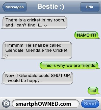 Glendale the cricket.  For some reason I find that the best cricket name ever!! <3 :)