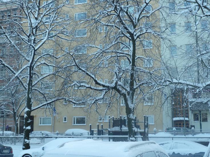 Frozen scenery