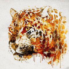 Jaguar in watercolor  by Marian Voicu