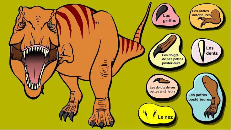 Le Tyrannosaure - Le Dictionnaire sur les dinosaures - Dessin animé éduc...