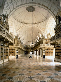 The Library of the Convent of Mafra, Portugal, one of the most amazing places I've seen.