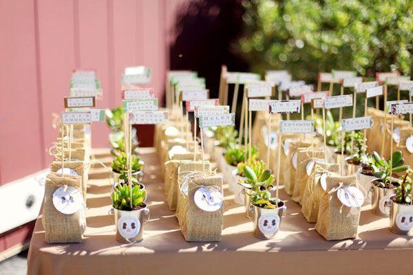 Plantinhas de lembrancinha