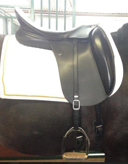 #dressage saddle for sale in Chigago