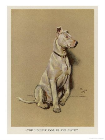 The ugliest dog in the show by Cecil Aldin