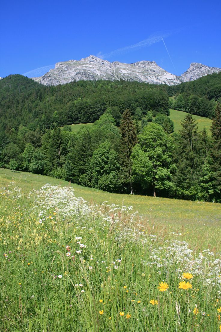 Haute Savoie, Thônes
