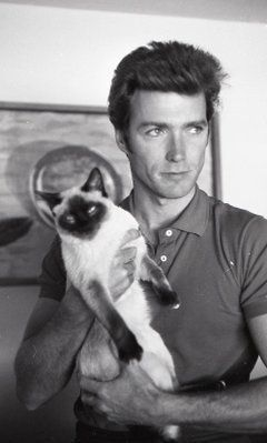 Clint Eastwood & a cat - I love him more than ever & I loved him a wicked lot already!!!!!!!