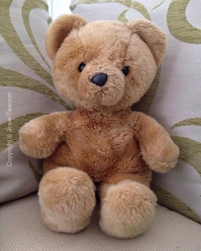 Found on 20 Feb. 2016 @ Bonsall, Derbyshire, UK. This is Teddy. We don't know his real name. He was found yesterday 20th February, head first in the mud by the side of a road in Bonsall, Derbyshire near the church. He was pulled out of the mud by... Visit: https://whiteboomerang.com/lostteddy/msg/av612s (Posted by Josie on 21 Feb. 2016)