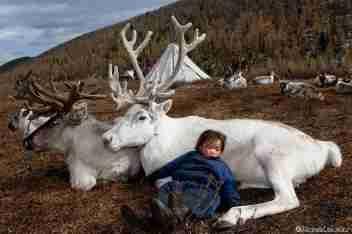 ÁNGELES : une tribu du nord de Mongolie : les Tsaatan ou Dukham, un peuple qui est en risque de disparaître. Hélas, je n'ai trouvé aucune information sur le Réseau par rapport à ce que j'ai entendu à la radio. Oui, il y a beaucoup de sites proposant de faire un voyage pour ne pas les laisser  tranquilles, mais rien sur les problèmes qu'ils ont. Ils sont à peine 40 familles qui forment un groupe nomade, collecteur, chasseur et éleveur de rennes