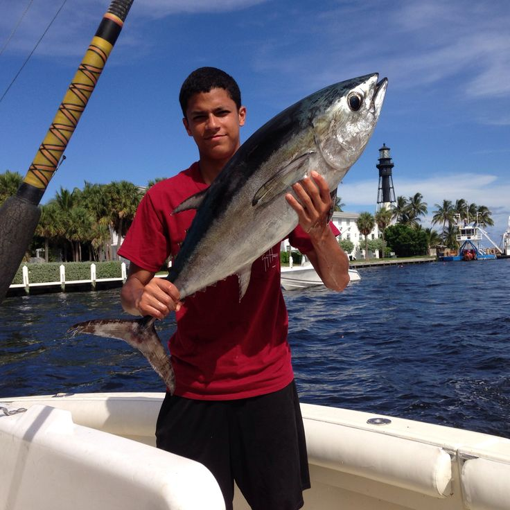 17 best images about fl deerfield beach boca raton for Boca raton fishing