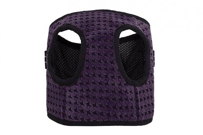 Harnais pour petit chien - SOHO Purple