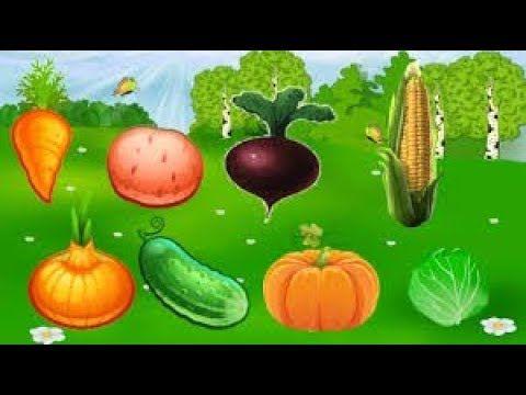Учим слова фрукты и овощи - развивающий мультик для детей от 1 года до 3...