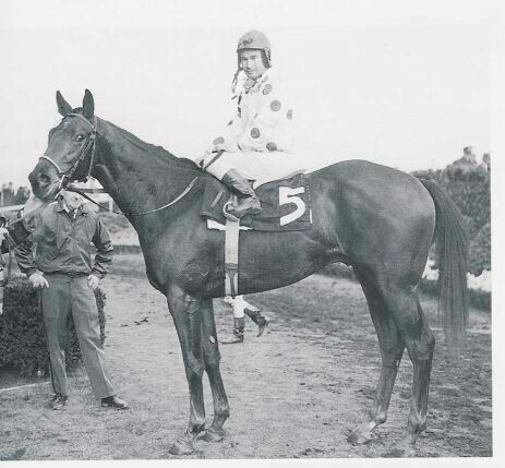 Damascus (1964-1995) was sired by Sword Dancer out of Kerala; Grandsire: Sun Glow; Damsire: My Babu. Damascus had a fine racing record of 21 victories from 32 starts (21-7-3) and in 1967 was the U.S. Champion 3-Year-Old Colt, the U.S. Champion Handicap Horse and Horse of the Year. Damascus was inducted into the Hall of Fame in 1974.