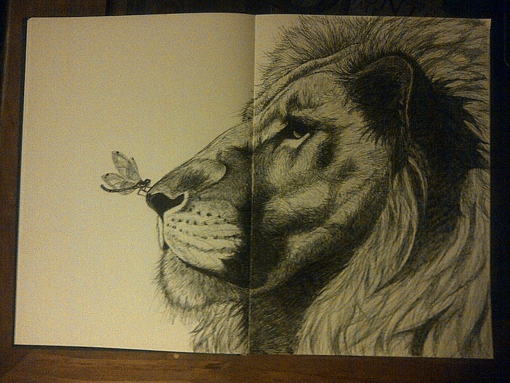 """""""The Lion & Dragonfly"""""""