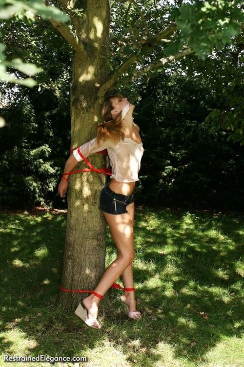 Teen Fucked In The Forest