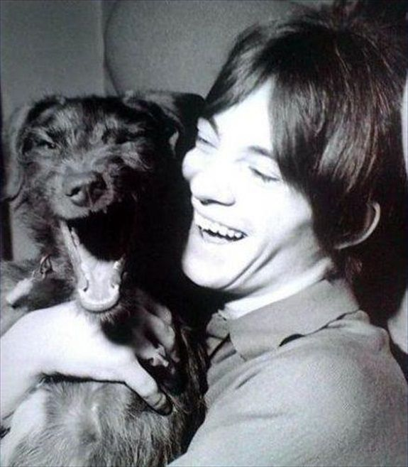 Artists and Animals #111 ~ Steve Marriott