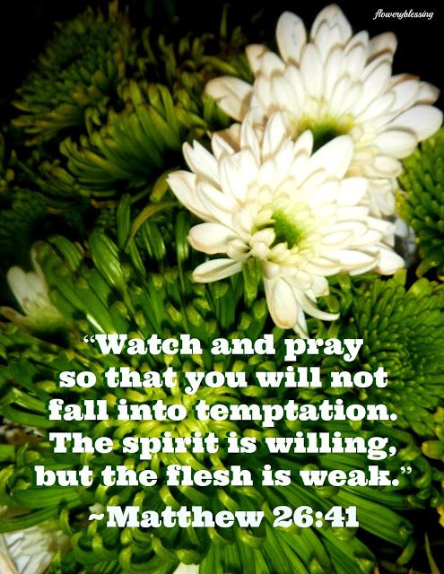 """Flowery Blessing: """"Watch and pray so that you will not fall into temptation. The spirit is willing, but the flesh is weak."""" ~ MATTHEW 26:41 (NIV)"""