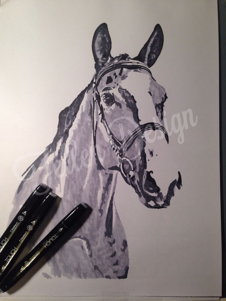 Horse. Markers on paper   #tellendesign #art #horse #markers