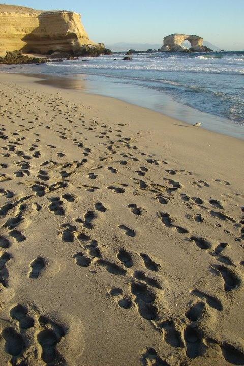 Portada de #Antofagasta - Es un clásico de esta ciudad minera y además puede disfrutar de su espectacular playa.