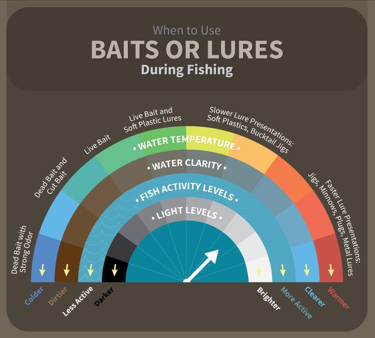 "<a href=""https://www.fix.com/blog/bait-versus-lures-which-is-best/""><img src=""https://www.fix.com/assets/content/19048/baits-or-lures-during-fishing.png"" alt=""When to use Baits or Lures"" border=""0"" /></a><br />Source: <a href=""https://www.fix.com/blog/"">Fix.com Blog</a>"
