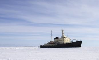 Atomflot: traffic on the Northern Sea Route will reach 15 million tonnes per year by 2020 - Business: Arctic-Info