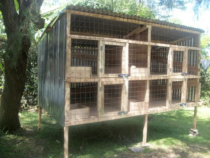 rabbit house design in kenya woodworking projects plans