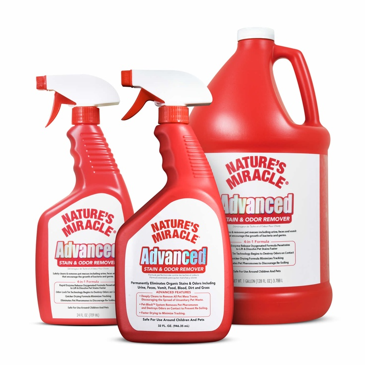 this stuff is wonderful on pet stains and smells