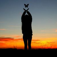 Силуэт с девушкой на закате с бабочкой #картинки#фото#силуэт#девушка#закат#бабочка#свобода