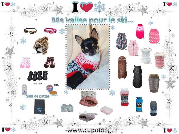 Equipement hiver pour chien www.cupofdog.fr