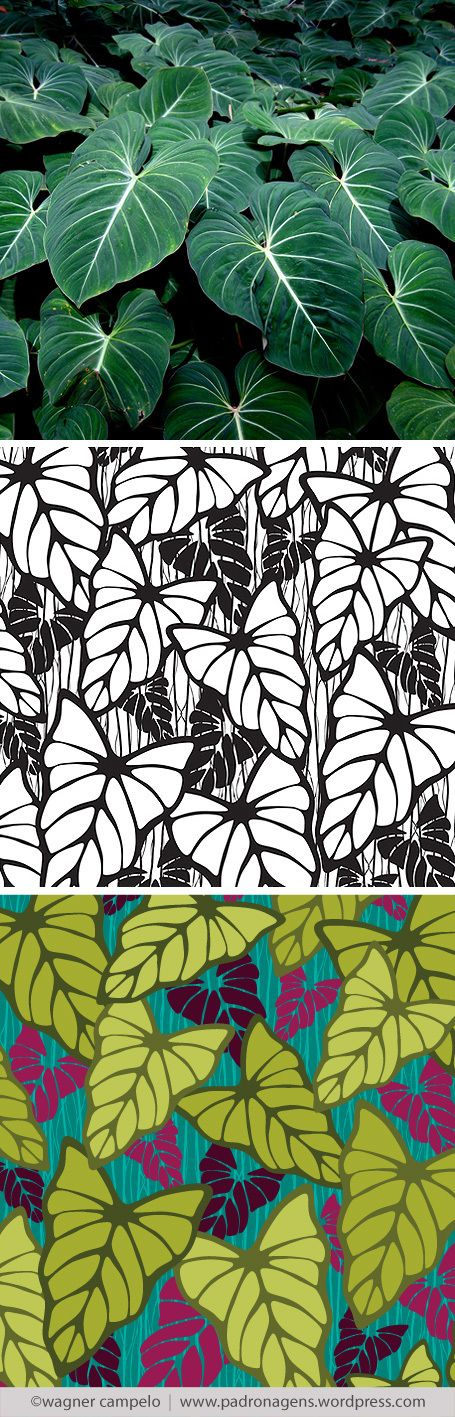 Creative process for prints from photos   Filodendros pattern.