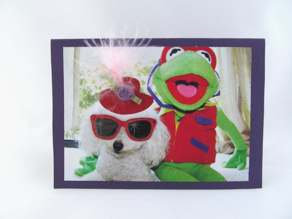Miniature Toy Poodle Dog Photo Greeting Card by Lillyzcardz, $4.00: Dog Photos, Occasion Card, Blank Card, Greeting Card, Dog Blank
