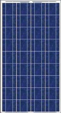 100 W 12 V solar panel Made in Mexico by Solarever  Just got our order in and only 20 left