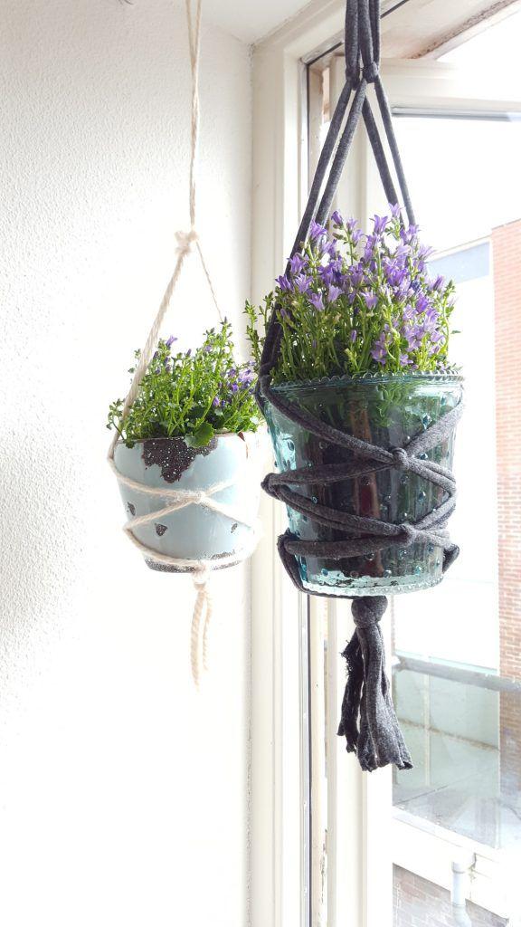 25 beste idee n over het planten van een tuin op pinterest een tuin starten moestuin tips en - Deco van de tuin ...